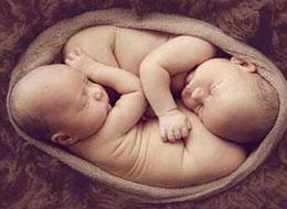试管婴儿选择男女